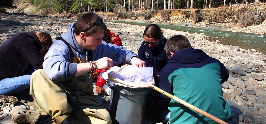 Students collecting samples at a creek